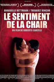 Le Sentiment de la chair mystream