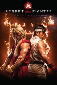 Street Fighter : Assassin's Fist mystream