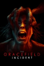 The Gracefield Incident mystream
