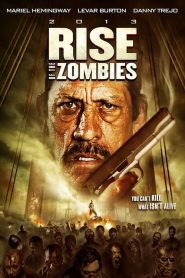 Rise of the Zombies mystream