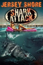 Jersey Shore Shark Attack mystream