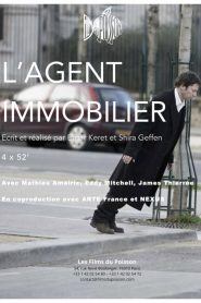 L'agent immobilier mystream
