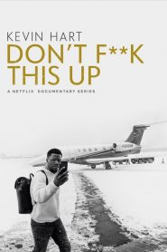 Kevin Hart: Don't F**k This Up mystream