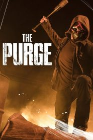 The Purge / American Nightmare mystream