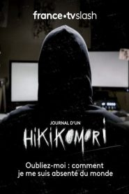 Journal d'un Hikikomori mystream
